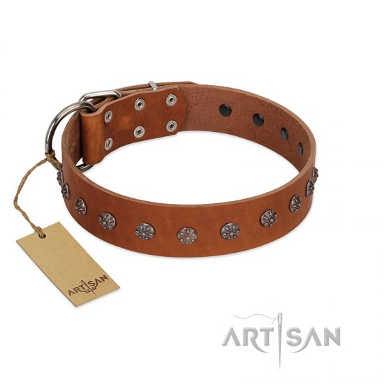"""Daintiness"" Designer Handmade FDT Artisan Tan Leather Rottweiler Collar with Silver-Like Adornments"