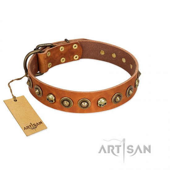 """Prez of the Pack"" FDT Artisan Tan Leather Rottweiler Collar with Skulls and Brooches"