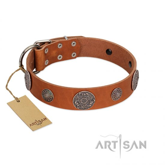 """Foxy Nature"" FDT Artisan Tan Leather Rottweiler Collar with Chrome Plated Brooches"