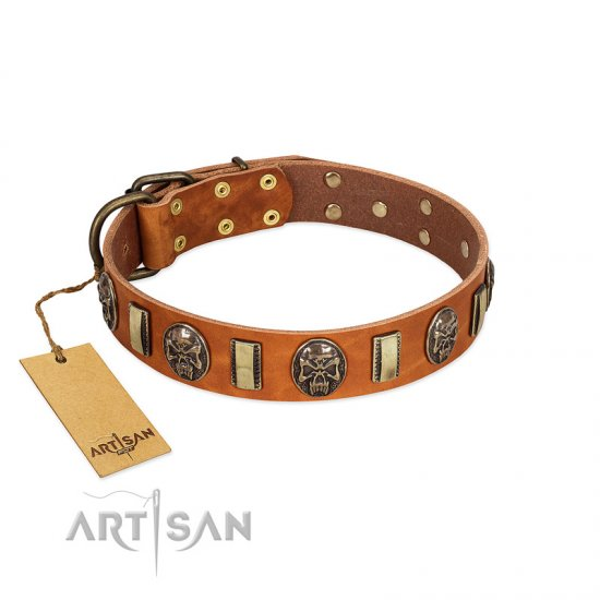 """Strike of Rock"" FDT Artisan Tan Leather Rottweiler Collar with Plates and Medallions with Skulls"