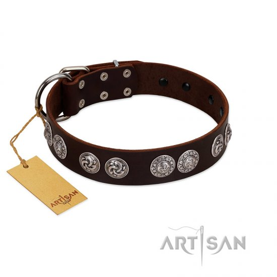 """High and Mighty"" FDT Artisan Classy Brown Leather Rottweiler Collar with Embellished Brooches"