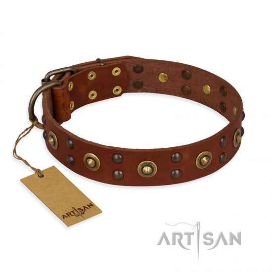 'Unfailing Charm' FDT Artisan Rottweiler Studded Tan Leather Dog Collar