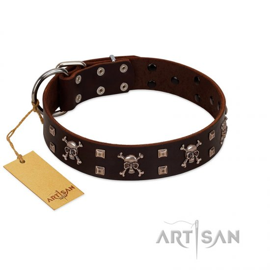 """Menacing Allure"" FDT Artisan Brown Leather Rottweiler Collar Embellished with Silvery Crossbones and Square Studs"