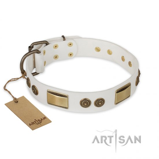 'Golden Avalanche' FDT Artisan White Leather Rottweiler Dog Collar with Plates and Circles - 1 1/2 inch (40 mm) wide