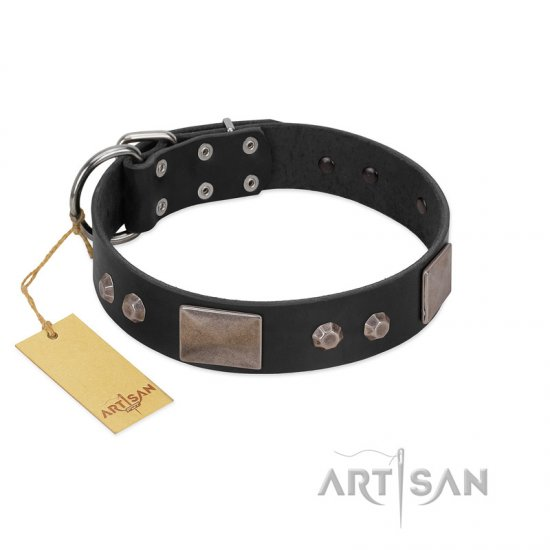 """Square Stars"" Modern FDT Artisan Black Leather Rottweiler Collar with Square Plates and Studs"