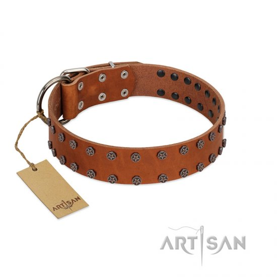 """Star Light"" Stylish FDT Artisan Tan Leather Rottweiler Collar with Silver-Like Studs"