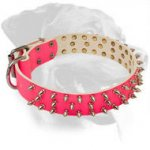 Rottweiler Pink Collar with Shining Nickel Spikes