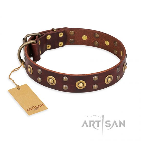 'Caprice of Fashion' FDT Artisan Rottweiler Brown Leather Dog Collar with Round Decorations