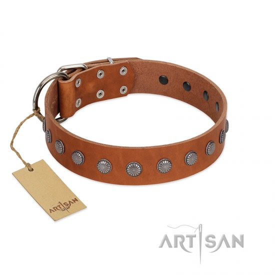 """Little Floret"" Fashionable FDT Artisan Tan Leather Rottweiler Collar with Silver-Like Adornments"