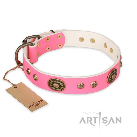 'Sensational Beauty' Classy FDT Artisan Pink Leather Rottweiler Collar with Brass Plated Decor