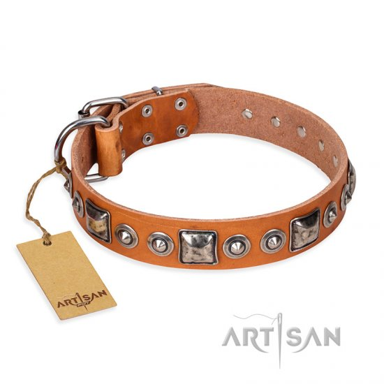 'Era of Future' FDT Artisan Handcrafted Tan Leather Rottweiler Dog Collar with Decorations