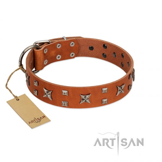 """Faraway Galaxy"" FDT Artisan Tan Leather Rottweiler Collar Adorned with Stars and Squares"
