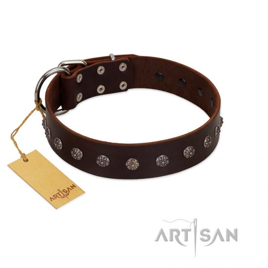 """Graceful Classic"" Mod FDT Artisan Brown Leather Rottweiler Collar"