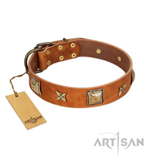 """Celtic Tunes"" FDT Artisan Tan Leather Rottweiler Collar Adorned with Stars and Squares - Click Image to Close"