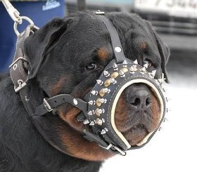 Spiked Anti-Barking Leather Rottweiler Muzzle Nappa Padded from Inside