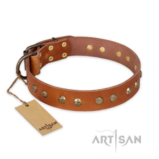 'Spring Flavor' FDT Artisan Rottweiler Tan Leather Dog Collar with Old Bronze-Like Plated Engraved Studs 1 1/2 inch (40 mm) wide