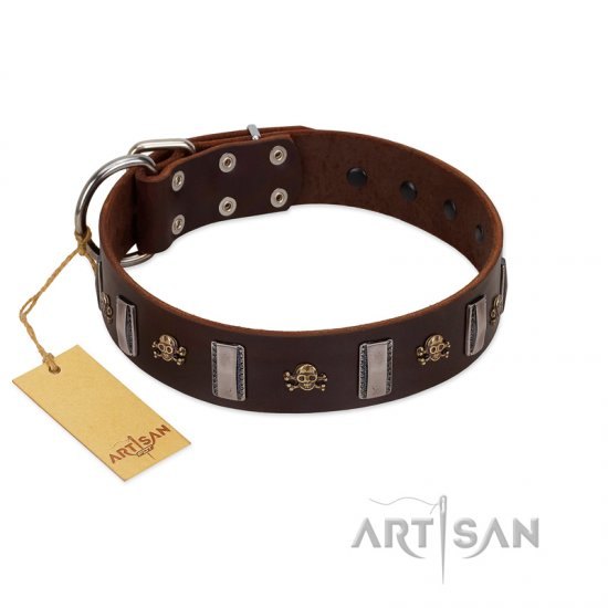 """War Chief"" FDT Artisan Genuine Brown Leather Rottweiler Collar with Skulls and Plates"