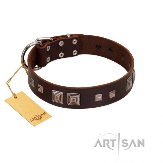 """Object of Virtu"" FDT Artisan Brown Leather Rottweiler Collar with Old Silver-like Square Studs and Pyramids"