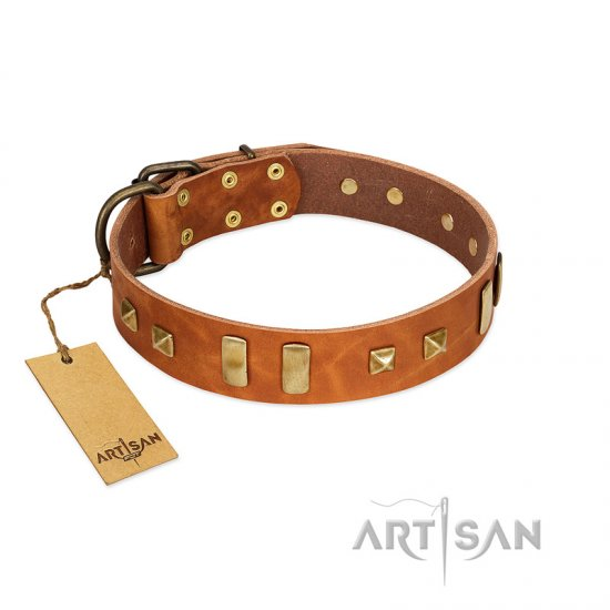 """Sand of Time"" FDT Artisan Tan Leather Rottweiler Collar with Old Bronze-like Studs and Plates"