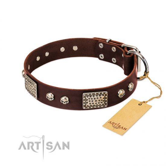 """Pirate Skull"" FDT Artisan Brown Leather Rottweiler Collar with Old Silver Look Plates and Skulls"