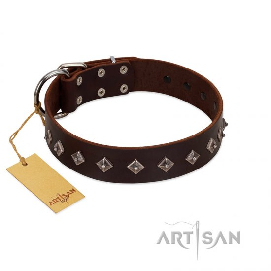 """Boundless Energy"" Premium Quality FDT Artisan Brown Designer Leather Rottweiler Collar with Small Pyramids - Click Image to Close"