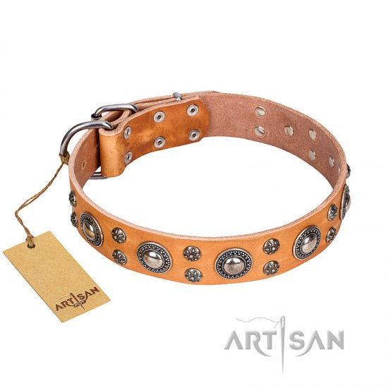 """Extra Sparkle"" FDT Artisan Tan Color Genuine Leather Rottweiler Collar"