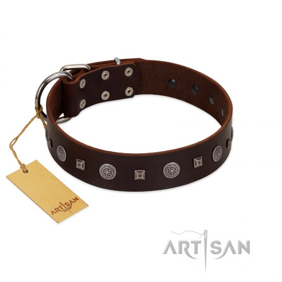 """Pure Sensation"" Exclusive FDT Artisan Brown Leather Rottweiler Collar with Fancy Brooches and Studs"