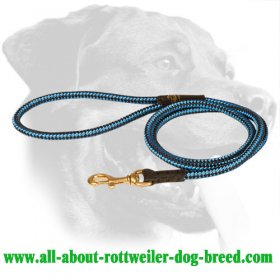 Nylon Pulling Dog Harness with Chest Plate for Rottweiler