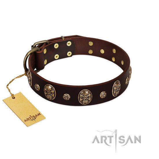 """Breaking the Horizon"" FDT Artisan Brown Leather Rottweiler Collar with Engraved Studs and Medallions"