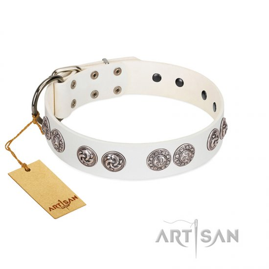 """Eye Candy"" Appealing FDT Artisan White Leather Rottweiler Collar with Chrome Plated Medallions"