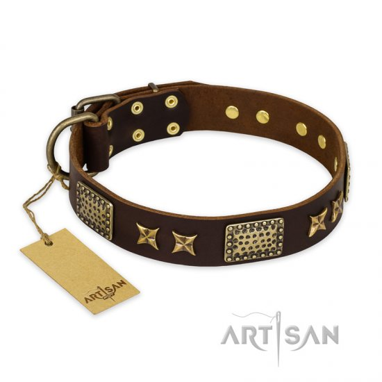"""Sparkling Bronze"" FDT Artisan Brown Leather Rottweiler Collar with Stars and Plates"