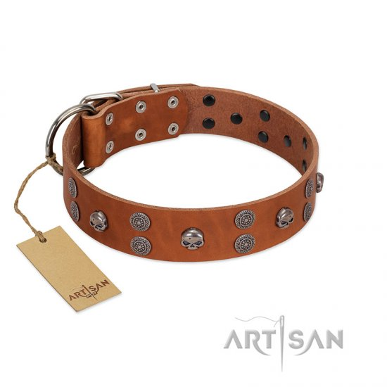 """Road Rider"" FDT Artisan Tan Leather Rottweiler Collar with Old Silver-like Skulls and Medallions"