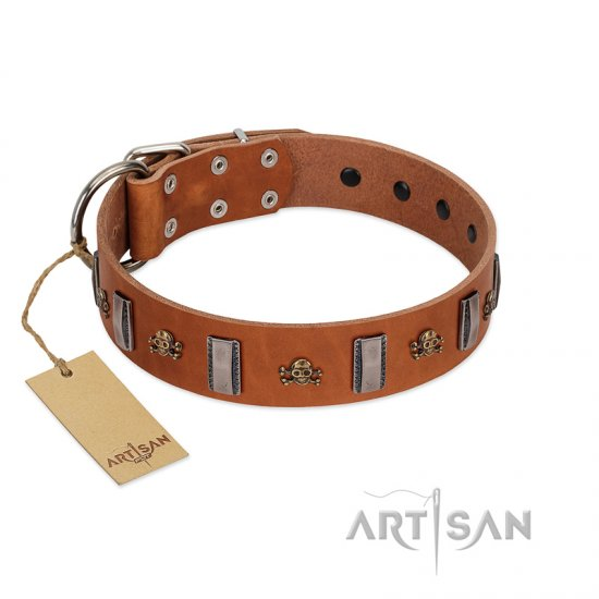 """Golden Crossbones"" Handmade FDT Artisan Tan Leather Rottweiler Collar with Plates and Skulls"