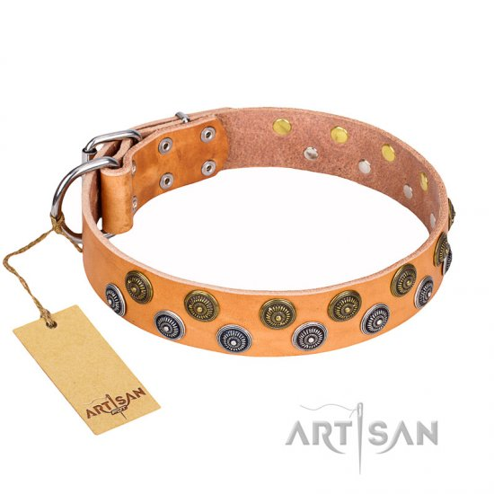"""Precious Sparkle"" FDT Artisan Handcrafted Tan Leather Rottweiler Collar"