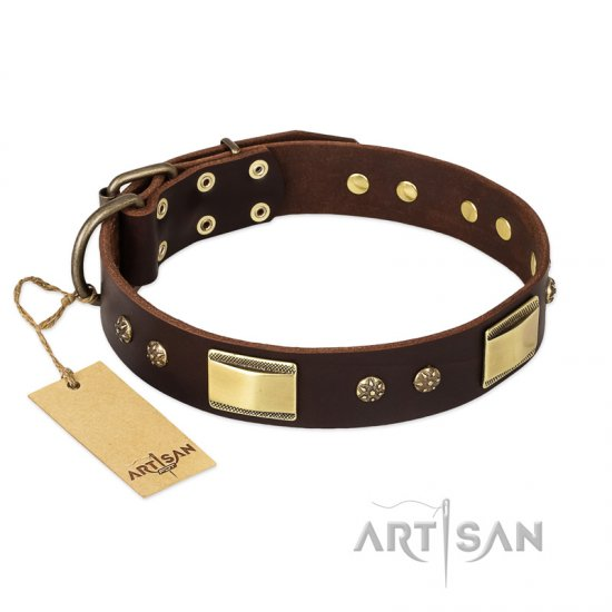 FDT Artisan 'Rich Fashion' Decorated Leather Rottweiler Collar with Plates and Studs - 1 1/2 inch (40 mm) wide