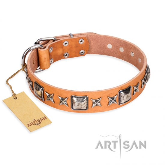 'Silver Chic' FDT Artisan Tan Leather Rottweiler Collar with Silvery-plated Decorations