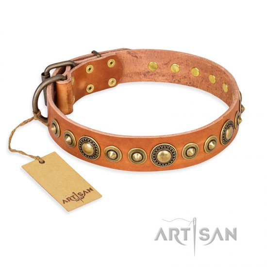 'Feast of Luxury' FDT Artisan Rottweiler Tan Leather Dog Collar with Old Bronze-Like Plated Circles - 1 1/2 inch (40 mm) wide