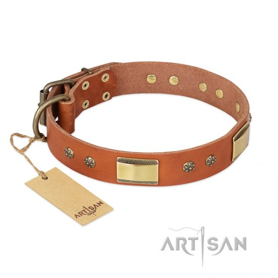 'Enchanting Spectacle' FDT Artisan Rottweiler Tan Leather Dog Collar with Golden-Like Studs - 1 1/2 inch (40 mm) wide