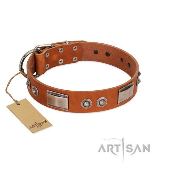 """Pawsy Glossy"" FDT Artisan Exclusive Tan Leather Rottweiler Collar 1 1/2 inch (40 mm) wide"