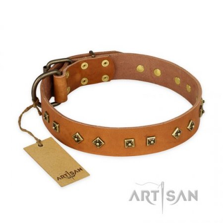 'Autumn Story' FDT Artisan Tan Leather Rottweiler Collar with Old Bronze Look Studs - 1 1/2 inch (40 mm) wide
