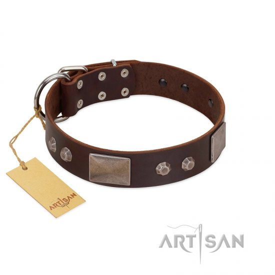 """Stone Stars"" Stylish Handmade FDT Artisan Brown Leather Rottweiler Collar"