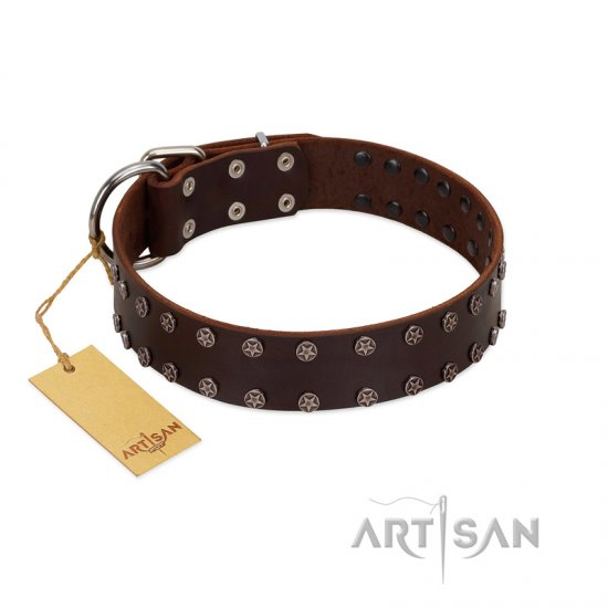 """Star Party"" Handmade FDT Artisan Brown Leather Rottweiler Collar with Silver-Like Studs"