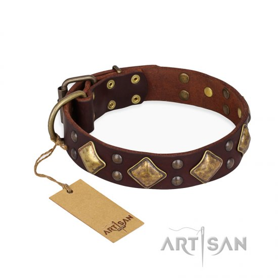 'Golden Square' FDT Artisan Brown Leather Rottweiler Collar with Large Squares - 1 1/2 inch (40 mm) wide