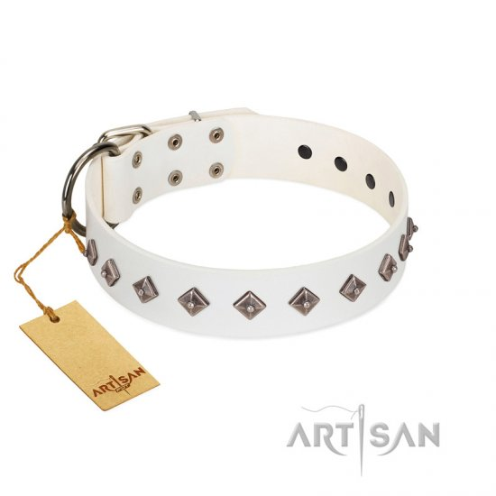 """Snowy Day"" Stylish FDT Artisan White Leather Rottweiler Collar with Small Dotted Pyramids"