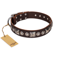 'Pierian spring' FDT Artisan Brown Leather Rottweiler Dog Collar with Silvery Decorations - 1 1/2 inch (40 mm) wide