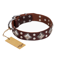 """King of Grace"" FDT Artisan Brown Leather Rottweiler Collar for Walking in Style"