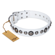 'Ice Age' FDT Artisan White Studded Leather Rottweiler Collar