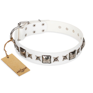 """Intergalactic Travelling"" FDT Artisan Studded White Leather Rottweiler Collar with Silvery Decor"