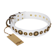 'Swirl of Fashion' FDT Artisan Delicate White Leather Rottweiler Collar with Stunning Bronze-like Plated Round Studs