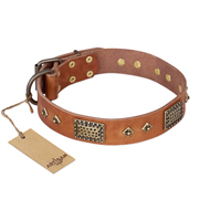 'Catchy Look' FDT Artisan Decorated Tan Leather Rottweiler Collar